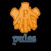 pules パソコン家庭教師(大阪、奈良への出張訪問・リモートのパソコン教室)